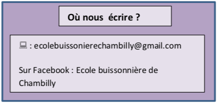 email ecolebuissonniere